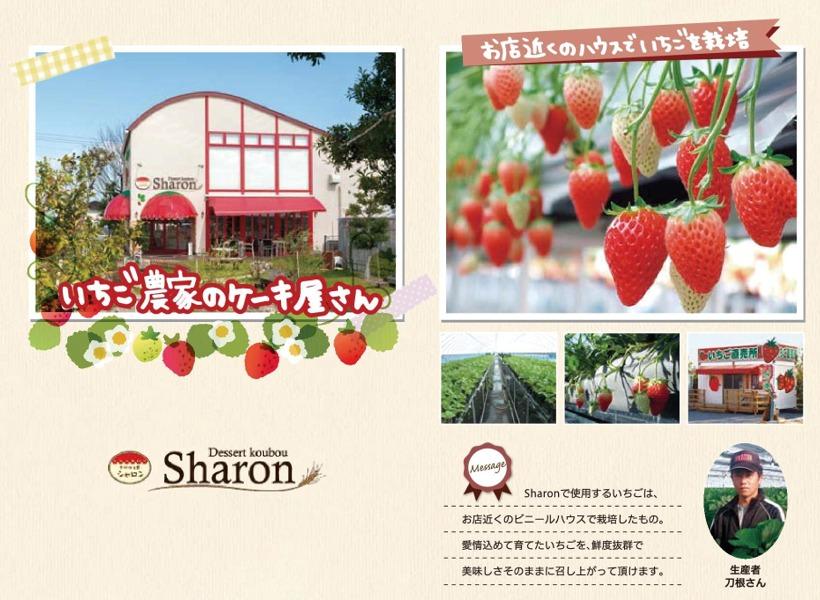 sharon-house
